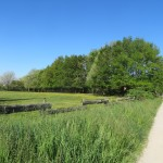 Le chemin d'accès, à gauche une prairie de fauche
